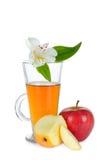 Zumo de manzana y manzana Foto de archivo libre de regalías