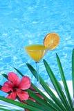 Zumo de naranja tropical imagen de archivo libre de regalías