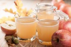 Zumo y manzanas frescos de manzana Fotos de archivo