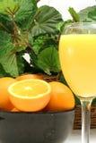 Zumo y naranjas de naranja verticales Imagenes de archivo