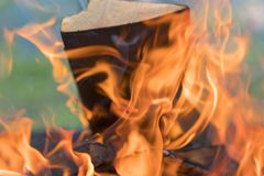 Zungen der Flammenfeuernahaufnahme Flammen von einem Feuer auf einem schwarzen Hintergrund abbildung Stockfoto
