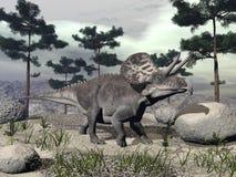 Zuniceratops dinosaur - 3D render Royalty Free Stock Photography