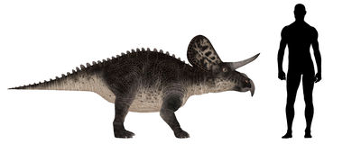 Zuniceratops Size Comparison Royalty Free Stock Photos