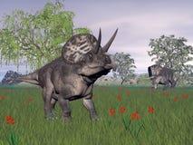 Zuniceratopsdinosaurussen in 3D aard - geef terug vector illustratie