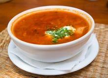 zupa Zdjęcia Stock