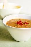 zupa laksa Zdjęcie Stock
