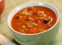 zupa warzyw Fotografia Royalty Free