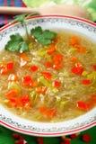 zupa z kapustą zdjęcia royalty free