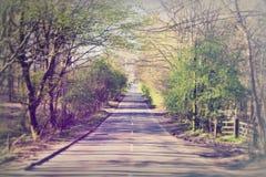 Zupełnie wiejska droga przez angielskiej wsi Fotografia Stock
