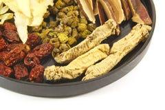 zupni chińscy ziołowi składniki Fotografia Stock
