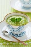 zupny gęsty warzywo zdjęcie stock