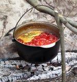 Zupny kucharstwo w okopconym kotle na ognisku Obraz Stock