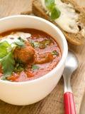 zupny pomidor zdjęcie royalty free