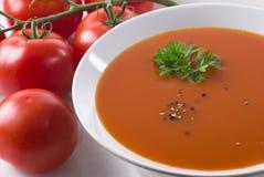 zupny pomidor Zdjęcia Royalty Free