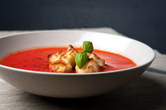 zupny pomidor fotografia royalty free
