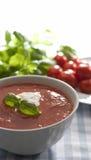 zupny pomidor Zdjęcie Stock