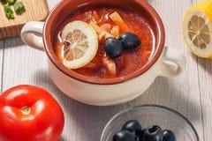 Zupny saltwort z mięsem, grule, pomidory, cytryna, czarne oliwki Zdjęcia Royalty Free