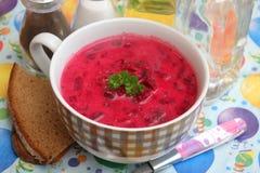 Zuppa di barbabietola fresca in una ciotola Fotografia Stock