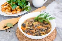 Zuppa di fungo casalinga con i funghi prataioli, erbe fresche Fotografia Stock