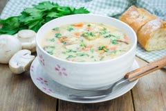 Zuppa di fungo con il pollo Immagini Stock