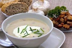 Zuppa di fungo con la erba cipollina ed i crostini Fotografia Stock