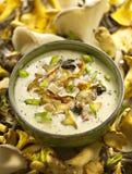 Zuppa di fungo servita in una ciotola Fotografia Stock