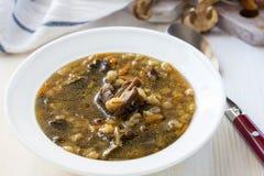 Zuppa di fungo vegetariana immagine stock libera da diritti