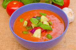 Zuppa di verdure fredda Immagine Stock Libera da Diritti
