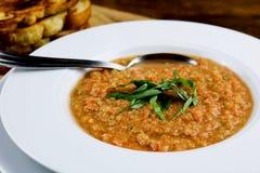 Zuppa di verdure fredda del pomodoro Immagine Stock Libera da Diritti