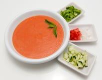 Zuppa di verdure fredda deliziosa Fotografie Stock Libere da Diritti