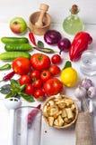 Zuppa di verdure fredda della minestra delle componenti fotografia stock