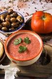 Zuppa di verdure fredda e lumache spagnole fotografia stock libera da diritti