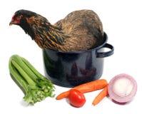 zupy zdjęcie stock