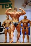 Zurück vom Bodybuilder am geöffneten Cup Bodybuilding Stockbilder
