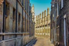 Zurück vom Dreiheitscollege in Cambridge, Großbritannien Lizenzfreies Stockbild