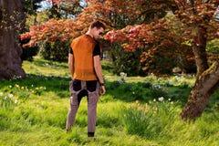 Zurück vom Mann vor einem Baum im Park Lizenzfreies Stockbild