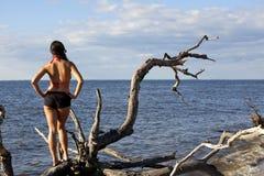 Zurück von der Frau, die über Ozean schaut lizenzfreies stockbild