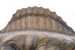 Zurück von einem Spinosaurus stockbilder