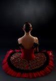 Zurück von einer Ballerina Lizenzfreie Stockbilder