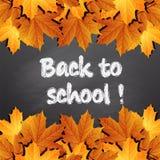 Zurück zu der Schule geschrieben auf Tafel mit Herbstlaub, Lizenzfreies Stockbild