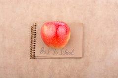 Zurück zu Schulbeschriftung mit einem Notizbuch Lizenzfreie Stockfotografie