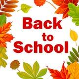 Zurück zu Schule Rot und Orange färbt Efeublattnahaufnahme Lizenzfreie Stockbilder