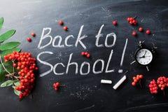 Zurück zu Schulhintergrund auf Tafel und Wecker Stockfotografie