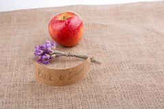 Zurück zu Schulthema mit Blume und Apfel Lizenzfreies Stockbild