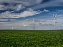 Zurücktretenreihe von Windkraftanlagen auf einem grasartigen Feld Lizenzfreie Stockbilder