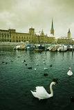 Zurich city on the water Stock Images
