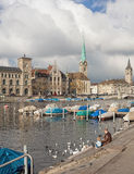 Zurich in late autumn Stock Images