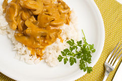 Zurich ragout with rice Royalty Free Stock Photography