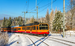 Zurich S-Bahn på det Uetliberg berget Royaltyfri Fotografi
