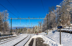 Zurich S-Bahn on Uetliberg mountain - Switzerland Stock Image